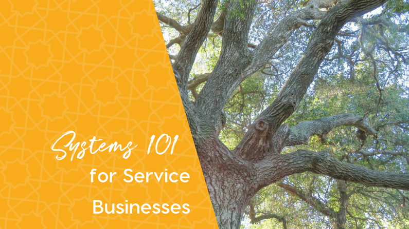 Systems 101 for Service (or Productized Service) Businesses